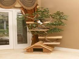 outdoor cat house plans diy outdoor cat house for winter biji