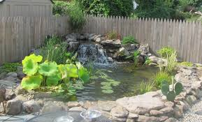 How Much To Landscape A Backyard by How Much Does The Average Pond Cost Premier Ponds Dc Md Va