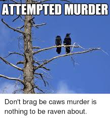 Attempted Murder Meme - attempted murder don t brag be caws murder is nothing to be raven