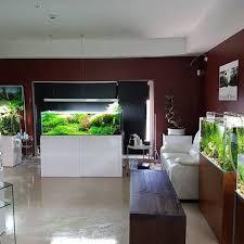 Aquascaping Shop Rui Alves Aquaeden Shop Instagram Photos And Videos