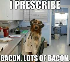 Dog Bacon Meme - help your dog love visiting the veterinarian dog guy josh