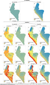 spatial variability of chloride deposition in a vegetated coastal