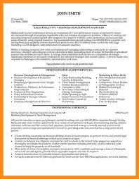 Venture Capital Resume 10 Sample Resume Of Sales Executive Azzurra Castle Grenada