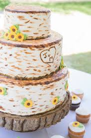 birch tree wedding cake maine wedding photographer u2022