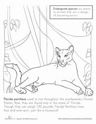104 flordia coloring pages images drawings