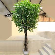 180cm office artificial ficus tree office plants dongyi