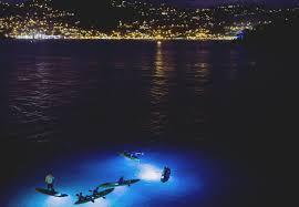 Kayak Night Lights Kayaking At Night Frenchman U0027s Reef U0026 Morning Star Marriott Beach