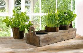indoor windowsill planter herb planter indoor garden ideas grower planting herbs lowe s kit