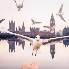 kristina makeeva london feed by kristina makeeva business recorder