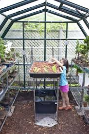 how to aquaponics backyard plans diy