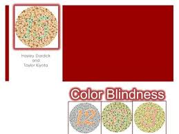 Incidence Of Color Blindness Color Blindness By Russell Luther The Basics Color Blindness Is A