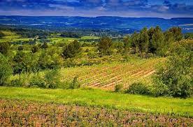 chambre agriculture aude les 18 best chambre agriculture aude image les idées de ma maison