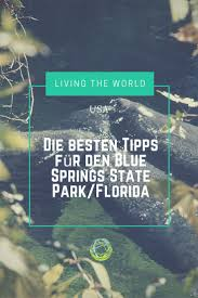 the 25 best blue springs state park ideas on pinterest blue