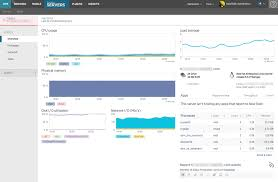 Cpu Info by New Relic Servers Overview Page New Relic Documentation