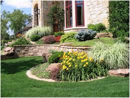 backyards modern small backyard pool landscaping ideas home
