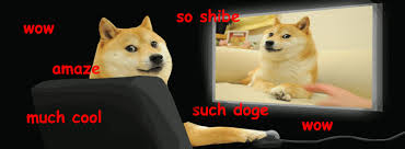 Doge Meme Best - nevin kohler irls 575 website wow