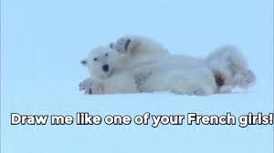 Dancing Bear Meme - cool dancing polar bear meme polar bear s find share on giphy 80