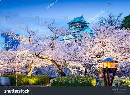 osaka japan osaka castle during spring stock photo 245131063
