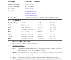 cv resume format resume format new ms word and formats archaicawful