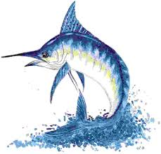 marlin blue fish