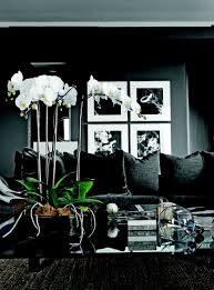 Dark Interior Design 36 Stylish Dark Living Room Designs Digsdigs