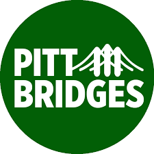 Definition of Public Health   Graduate School of Public Health     PITT BRIDGES jpg