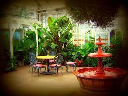 mesmerizing indoor decorative plants photo design inspiration