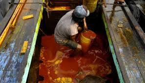 Minyak Cpo malaysia indonesia berencana ekspor minyak kelapa sawit ke cina