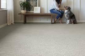 best color of carpet to hide dirt best carpet for pets in 2021 7 pet friendly carpet options