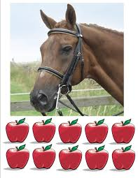 horse pictures to print out feed