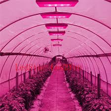 red and blue led grow lights full spectrum 400w led grow light red blue white warm uv ir ac 85