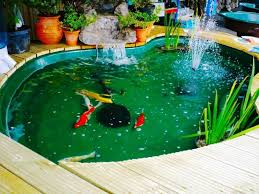 backyard 47 small backyard pond ideas best backyard pond