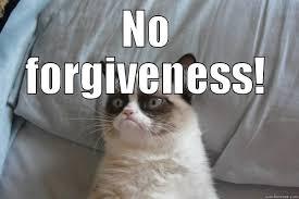 Grumpy Cat No Meme - grumpy cat memes quickmeme