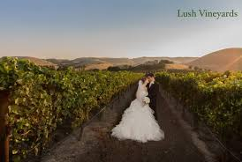sonoma wedding venues sonoma wedding venues sonoma valley wedding experts