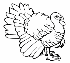 thanksgiving coloring pages activity village coloring page