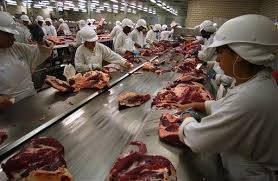 pilgrim pride brazil jbs world s largest beef producer reports losses and