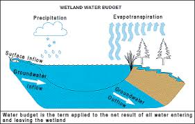 Define Water Table P12pic2 Gif