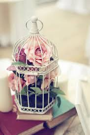 Birdcage Home Decor Enchanting Bird Cage Decoration 20 Birdcage Wedding Ideas 30212