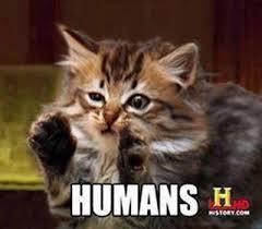 Humans Meme - humans meme guy