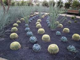 What Is Rock Dust For Gardens Garden Landscape For Surprising Lava Rock Dust Garden And Brown