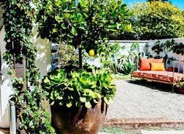 Wacky Garden Ideas Wacky Garden Ideas Dunneiv Org