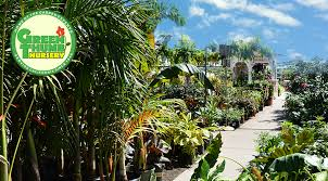 Landscape Nurseries Near Me by Green Thumb Nursery Southern California Garden Centers