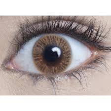 rx halloween contact lenses geo animation cp a7 blue halloween contacts color contacts and