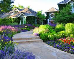 Front Yard Walkway Landscaping Ideas - walkway and mixed border traditional landscape by designscapes