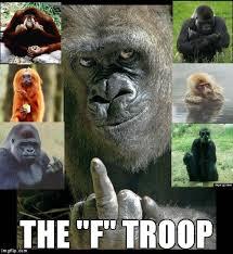 Funny Monkey Memes - monkey imgflip
