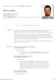 Php Programmer Resume Sample by Php Developer Resume Resume Cover Letter Template
