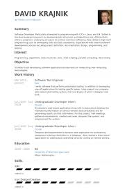 Sample Electronics Engineer Resume by Electronic Test Engineer Sample Resume 9 Software Test Engineer