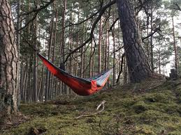Winner Outfitters Double Camping Hammock by Best Hammock Brands 2017 A Beginner U0027s Guide With Reviews