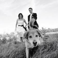 Affordable Photographers 24 Best Ottawa Wedding Photographer Images On Pinterest