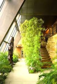 41 best garden green roofs images on pinterest green roofs roof
